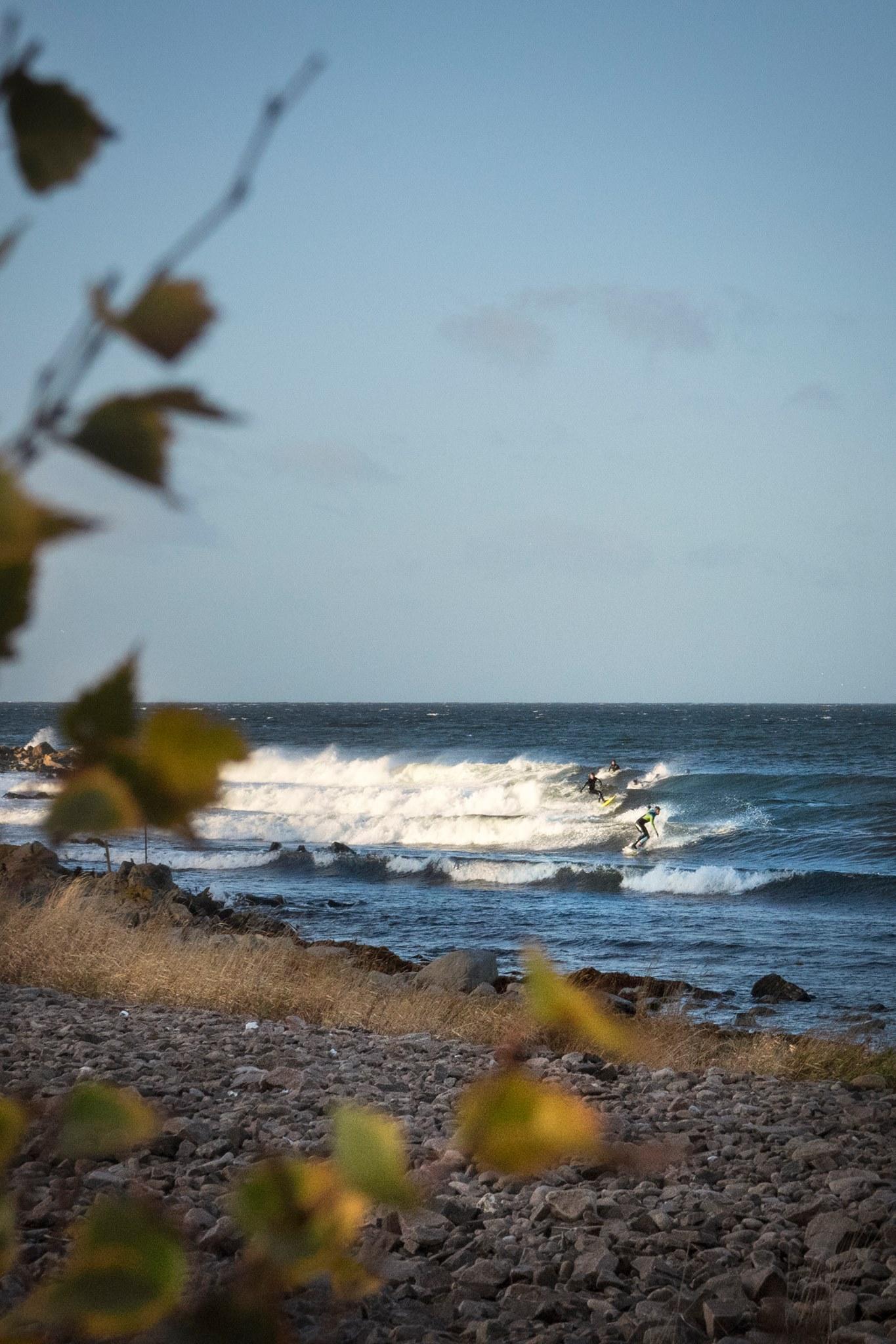 Surfing Sweden